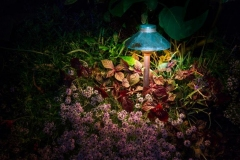 fx_olbrich_gardens_372rt